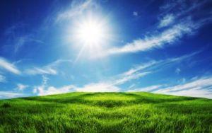 sun-shining-on-pasture