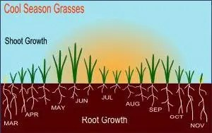 Illustration courtesy of http://www.geography.hunter.cuny.edu/~tbw/soils.veg/lecture.outlines/soils.chap.4/soils.chap.4.soil.climate.htm.