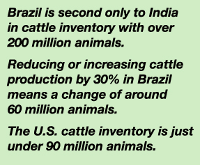 Brazil Beef Numbers