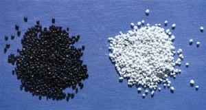 This is just one example of the difference between raw seed (left) and coated seed (right). Photo courtesy of New South Wales Primary Industry Department (Agriculture).