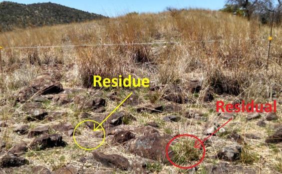 Jim Gerrish Residue Residual Rangeland
