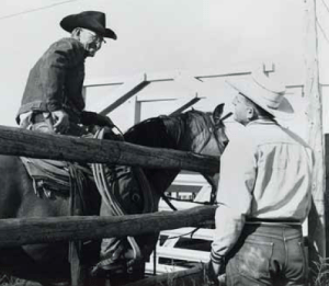 Rancher Spud (Frank) Horton (on horse) visits with ARS rangeland scientist Robert Bement during a study to weigh cattle in the 1960s at an experimental range.