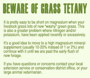 Beware of Grass Tetany