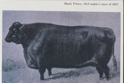 black_prince_1863