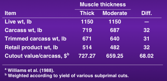 effect of muscle on carcass value