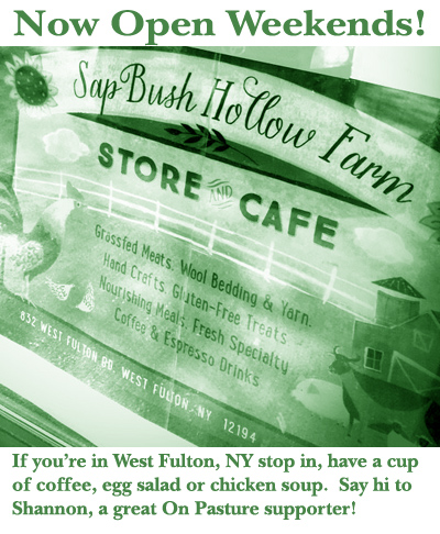 sap-bush-store-Open