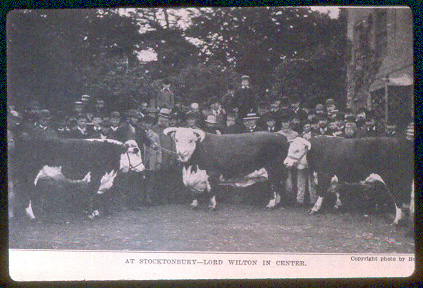 stochtonbury_dispersal_lordwilton