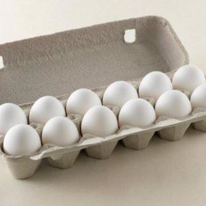 egg-carton-white