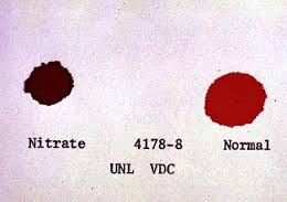 A comparison of blood color from an animal with nitrate poisoning and a healthy animal.
