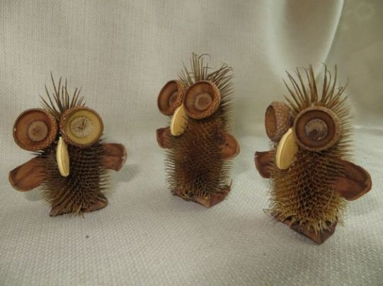teasel-owls