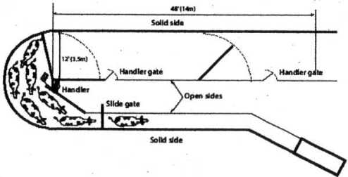 This is a tub system as designed by Temple Grandin.