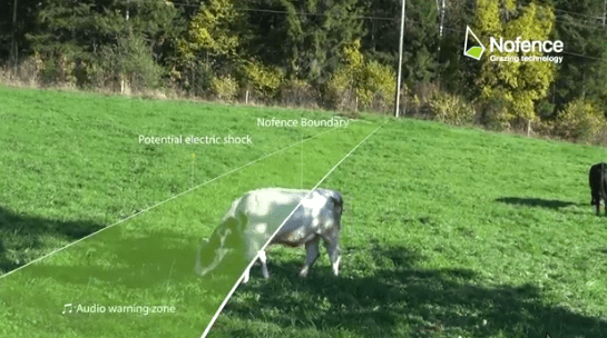Virtual Fence Keep Livestock In Pasture Without