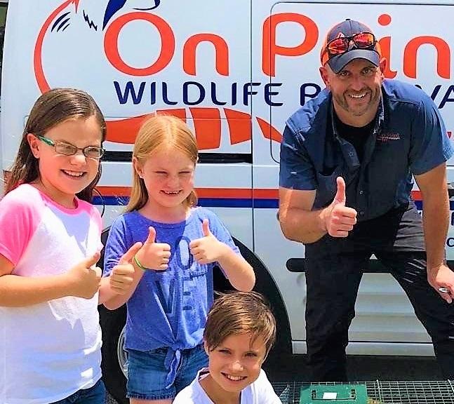 Melbourne, FL Wildlife Removal