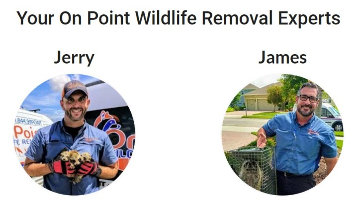 Waterford Lakes, FL Pest Control Service