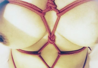 Chest harness in red bondage rope on bare skin. Photo.