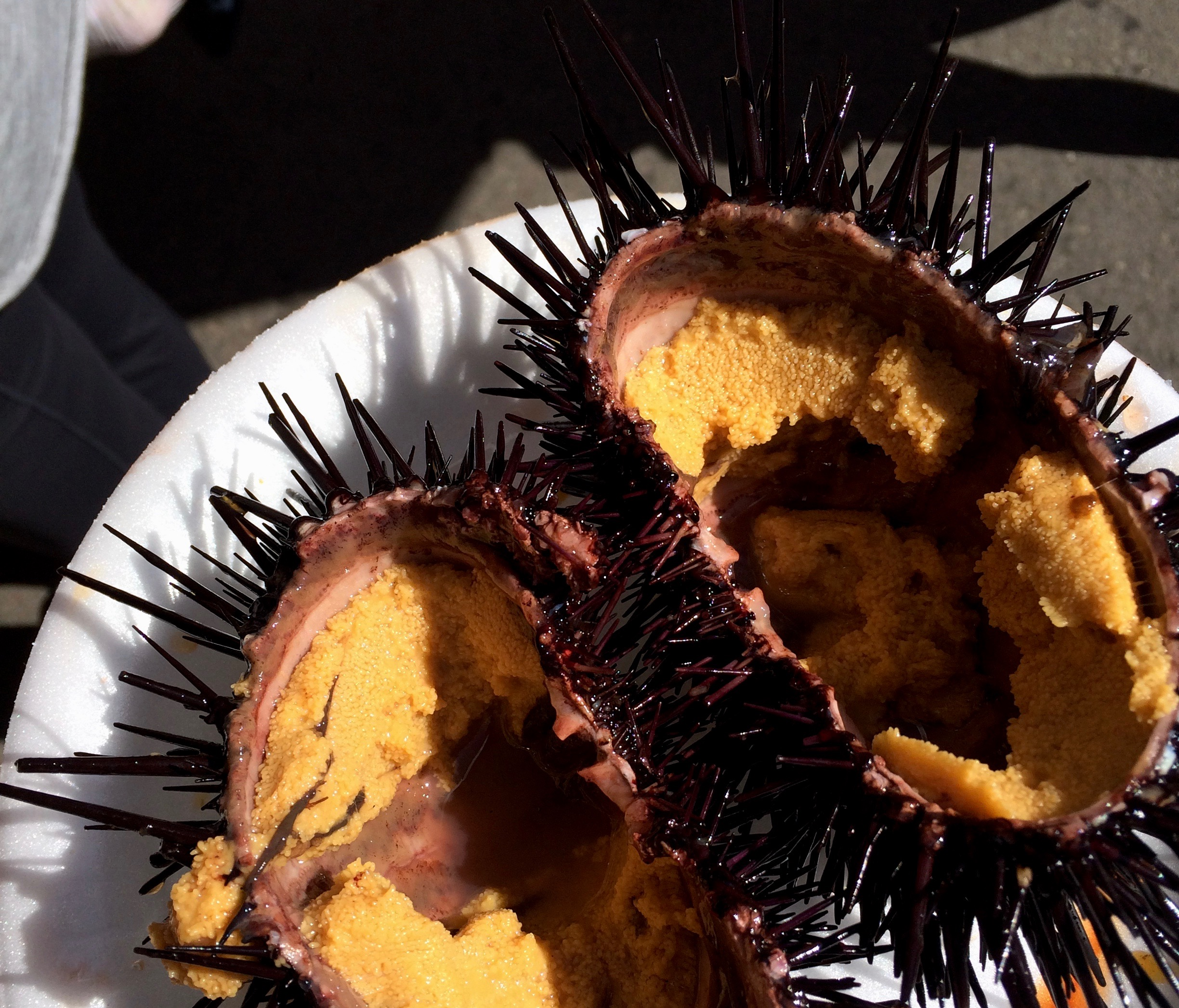 Freshly prepared uni at the San Diego market.