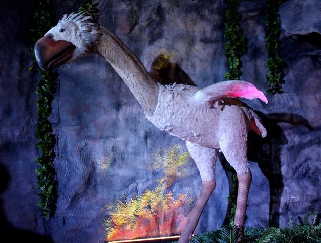 Oiseau de la Terreur