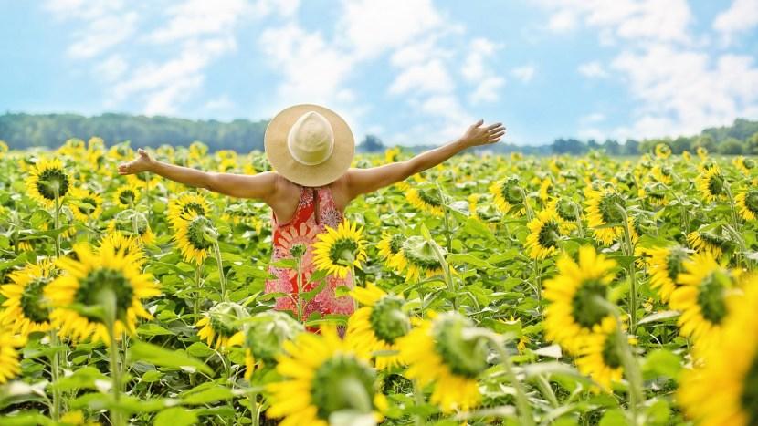 Een vrouw in een veld met zonnebloemen