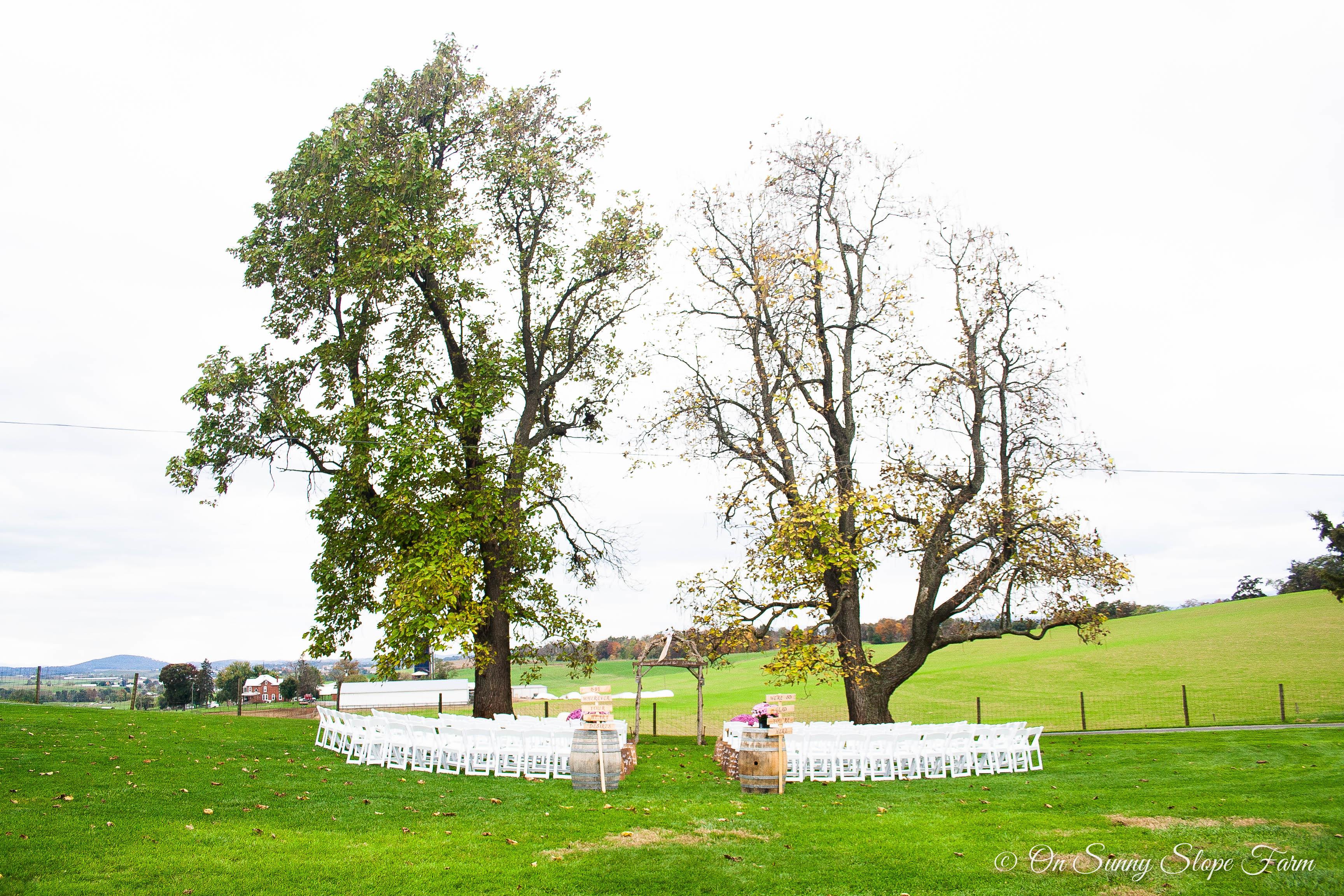 Fall_Wedding_On_Sunny_Slope_Farm-5