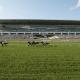 Bears purchase arlington international race track