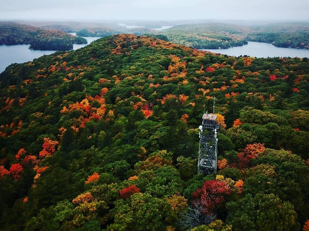 Dorset Lookout Tower and fall colours