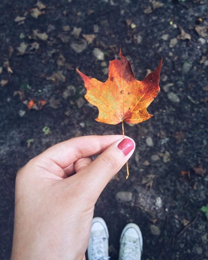woman holding a fall colour leaf at Rouge National Urban Park