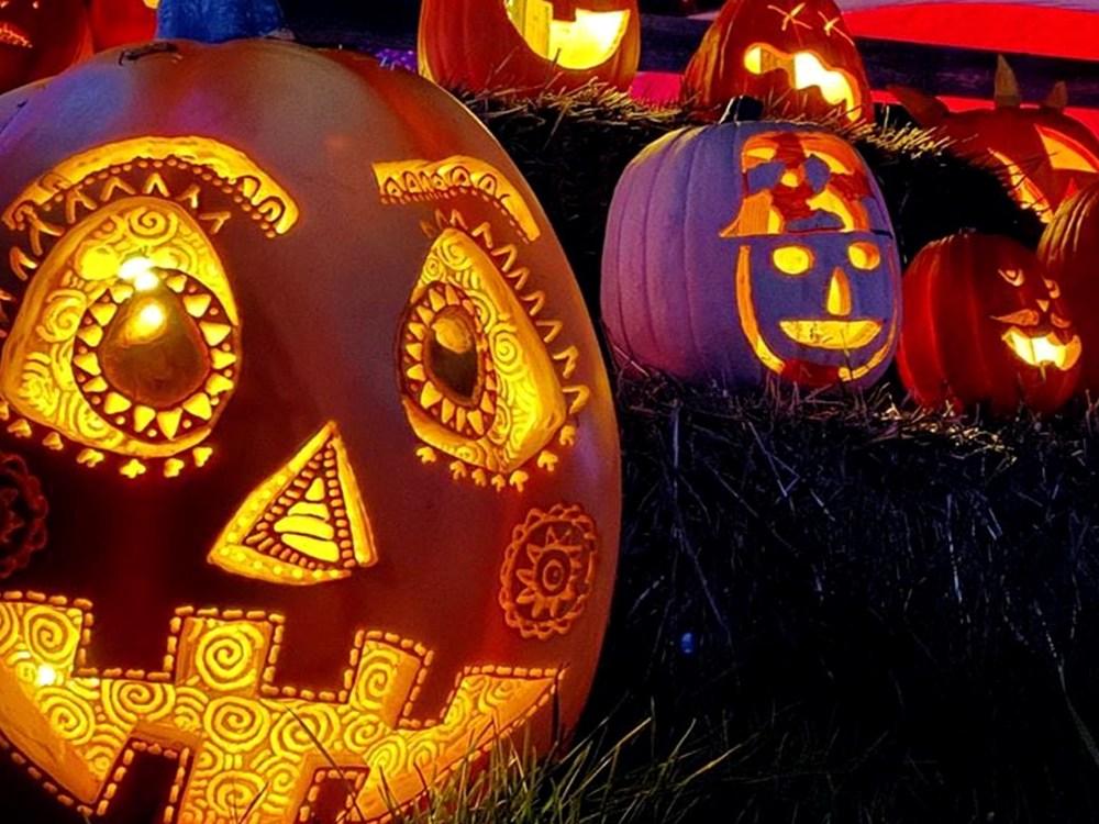 artfully carved pumpkins lit up