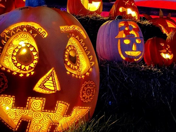 artfully carved pumpkins lit up