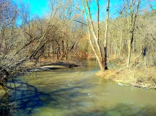 The river flows swiftly.