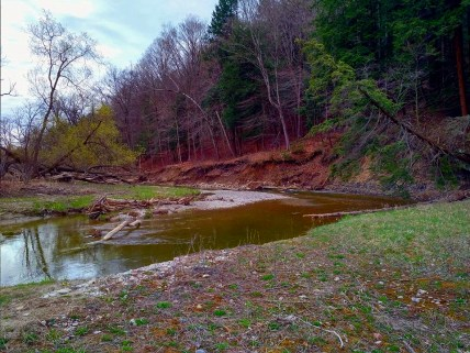 On the banks of the Little Rouge Creek.