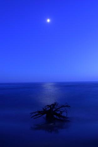 Moonlit night at Neys Provincial Park.