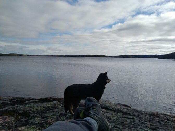 Anytime I'm in the mood for a hike, a local dog is sure to join me. Great bear deterrents.