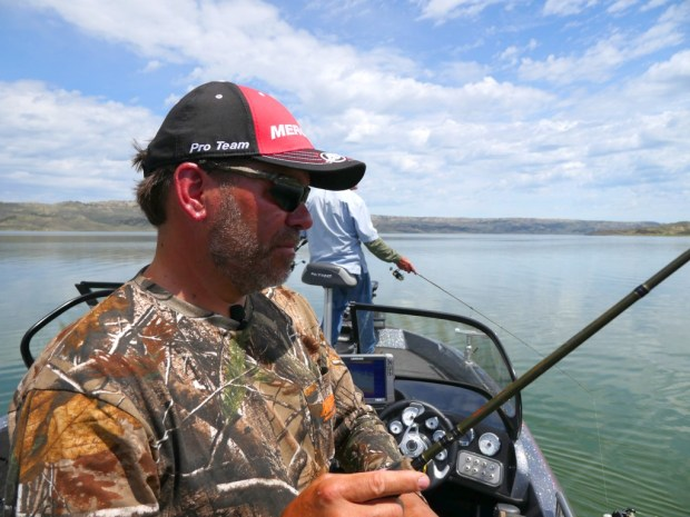 """When it comes to jigging, the Gulp 3"""" Minnow is a staple."""