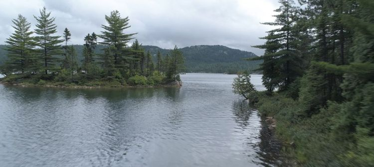 Wolf Lake, fresh water, islands, old growth pine forest