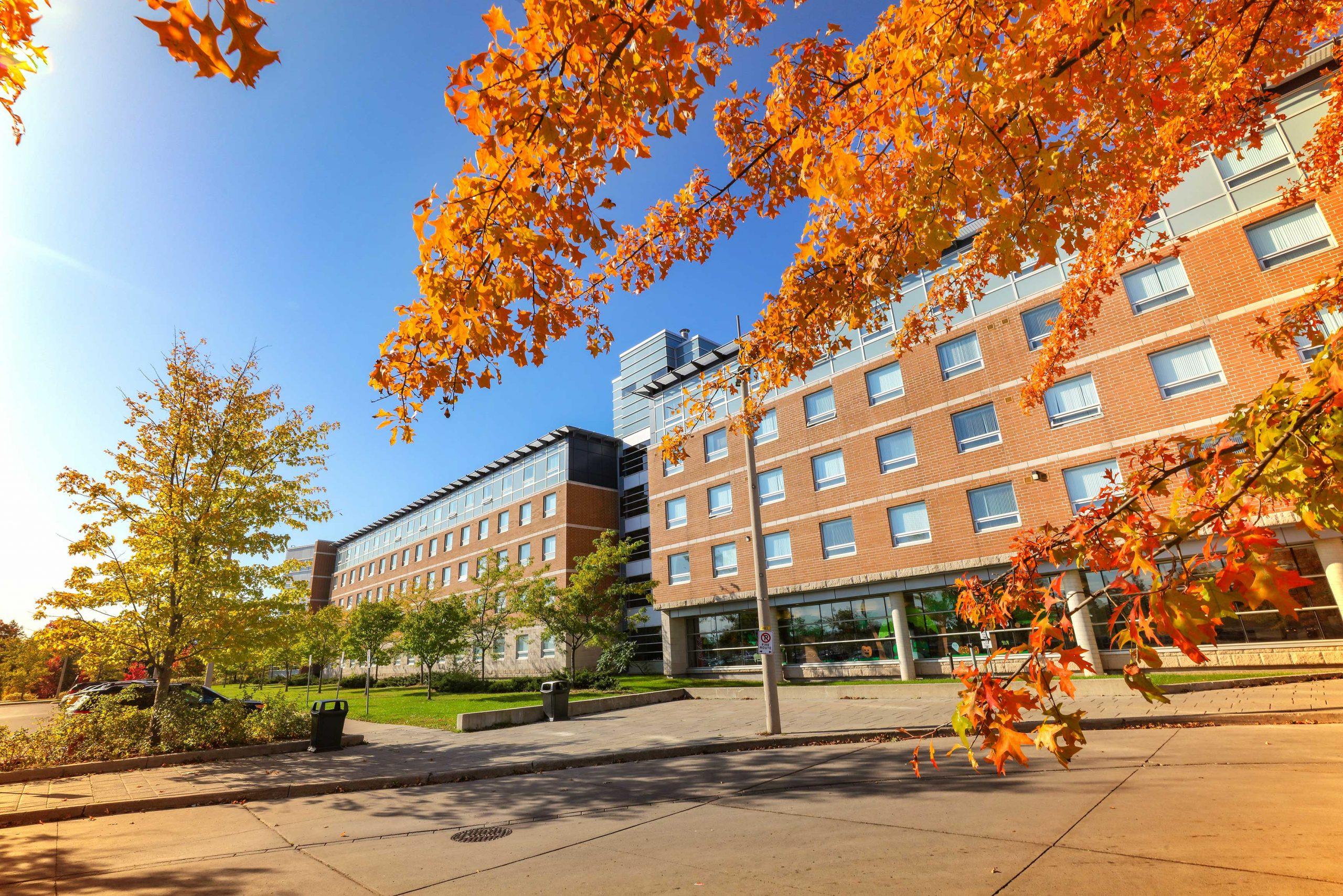 Ontario Tech University tawarkan uang kuliah kembali