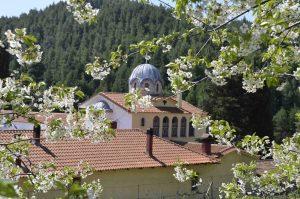 Klooster Osios David Drymona Noord Evia Griekenland