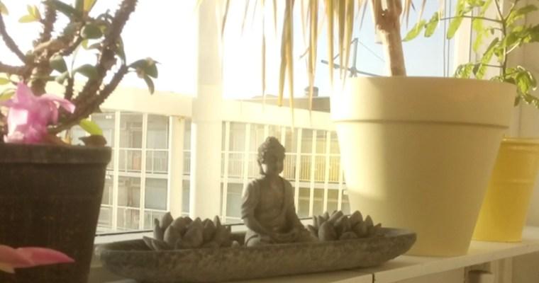 6 meditatie oefeningen voor beginners – Je kunt meteen beginnen!