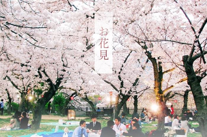 《城市印花。大阪》日本偶像劇般,在校園頂樓吃便當賞櫻花!