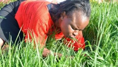 صور ، قس يجعل الناس يأكلون العشب