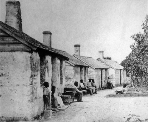 kingsley-plantation