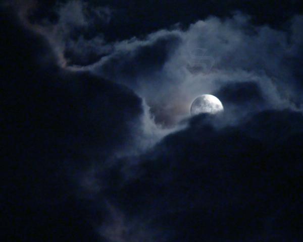 Werewolf's Moon