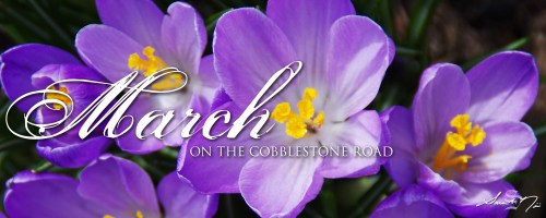 March newsletter On The Cobblestone Road purple crocuses by Sara A. Noe