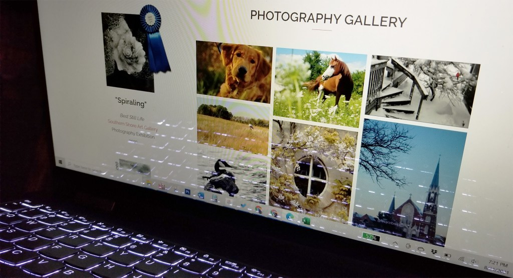 Personal resume website photography gallery by Sara A. Noe