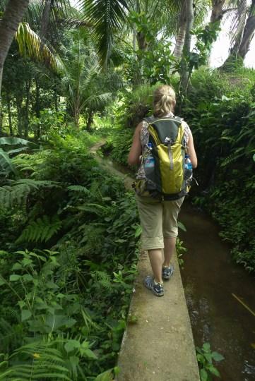 Bali Rice Walk-4
