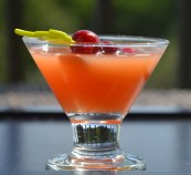 Raw Vegan Cranberry Zing - On the Lime