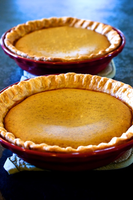 pumpkin pie with hazelnut crust