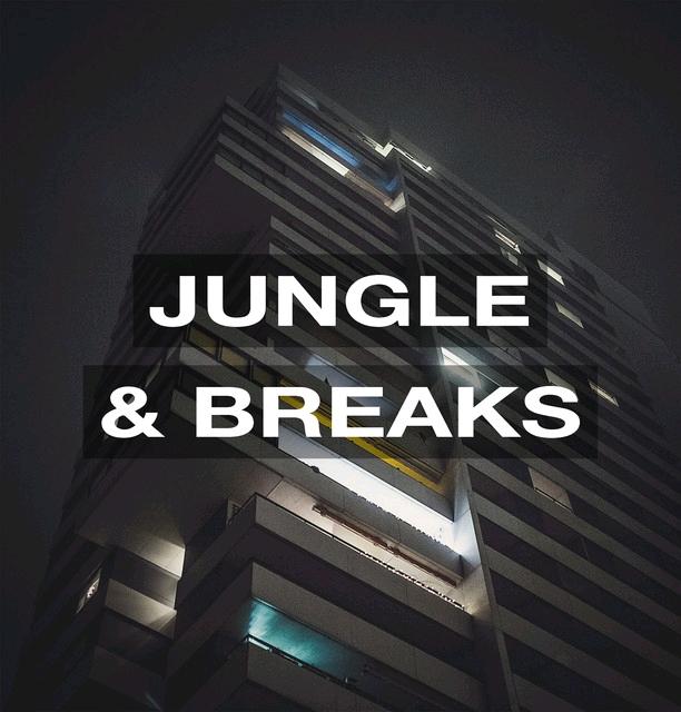 Jungle & Breaks 2021