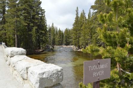 4-11 - Tuolumne river quite area