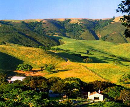 807 - Carmel Valley