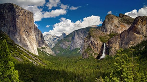 The Essential Yosemite - The Pleasure of Your Company